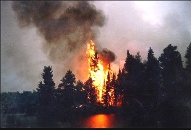 Forest fire, Minnesota