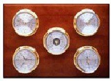Maximum Weather Instruments - Professional Weather Station
